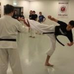 hapkido spin kick