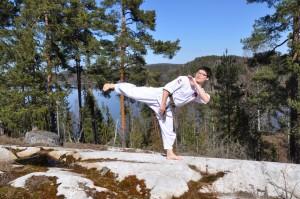 hapkido side kick