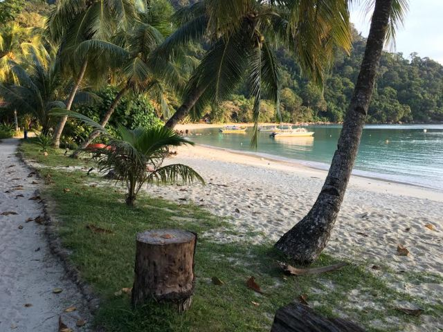 23 - Tenggol Coral Beach Resort 月影湾の度假村