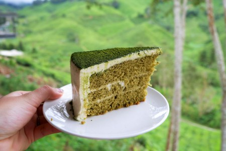 IMG 5243 - A Getaway in Cameron Highlands that will gives you more than you deserve!