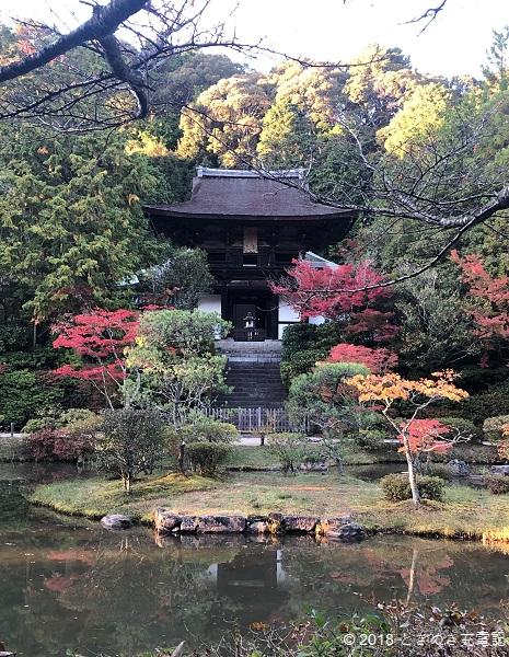 201911円成寺の紅葉。名勝・円成寺庭園で正面から楼門を眺める 奈良一人旅