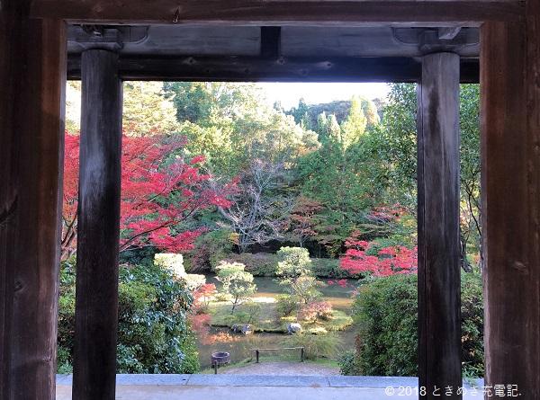 201911円成寺の紅葉。名勝・円成寺庭園を楼門から臨む 奈良一人旅