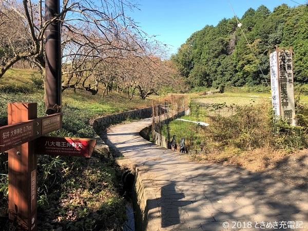 奈良一人旅・山の辺の道を歩く