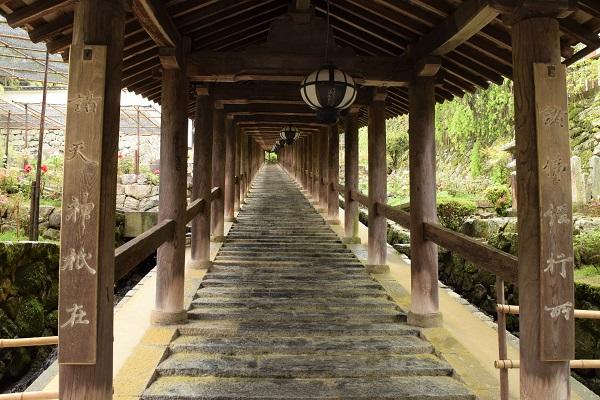 ★202104春の奈良一人旅。長谷寺の登廊