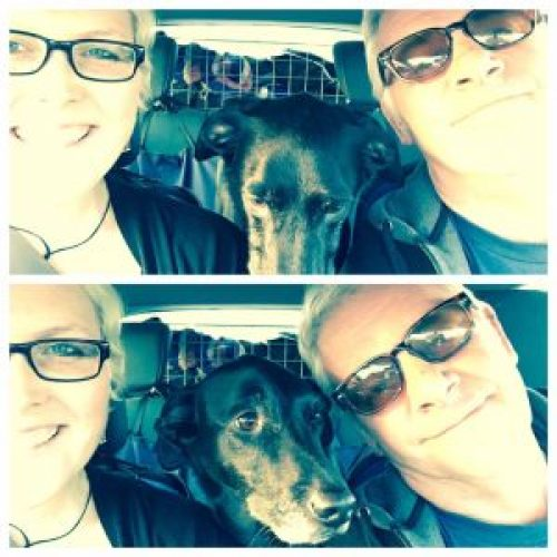 Dog car selfie - Tips for Road-tripping with a dog