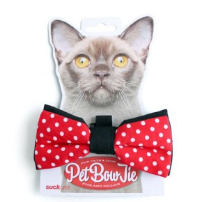 Pet Bow tie!!! Hansel would look fantastic with this  on! Notonthehightstreet.com, £7.50