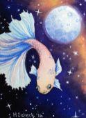 Moon Betta