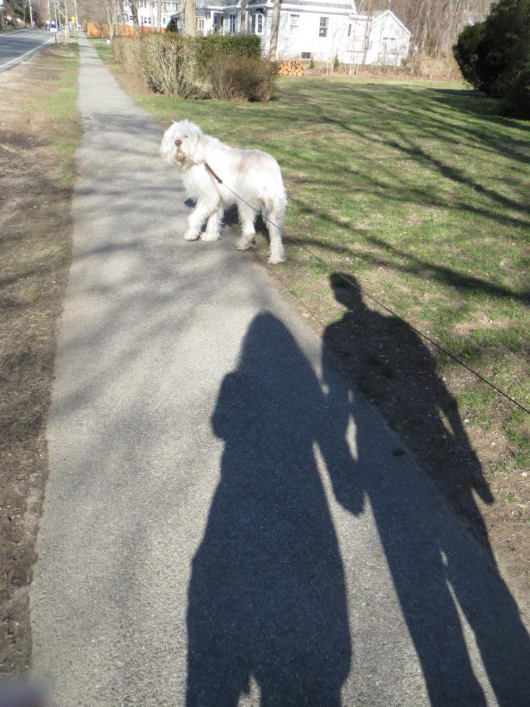 David walking beside me