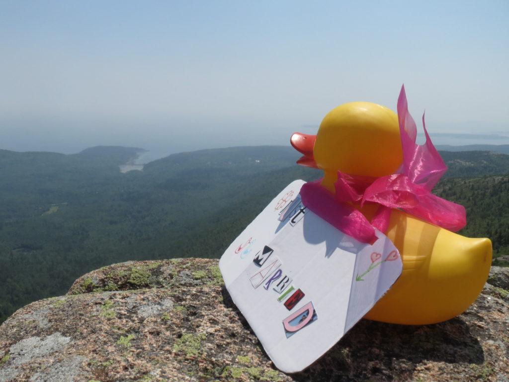 Big Duck sees Acadia
