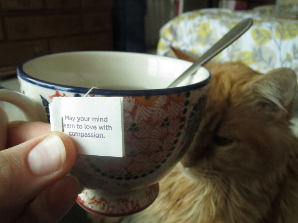 a blessing from my tea