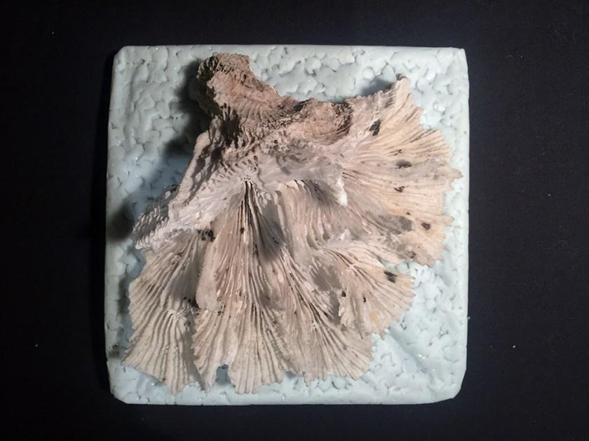 HDPE Pellet Cast & Coral