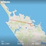 Kaitaia to Paihia (bus, bike)