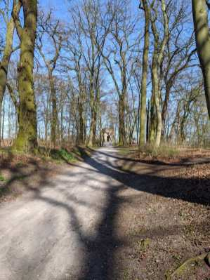 Waldweg zum Hexenturm