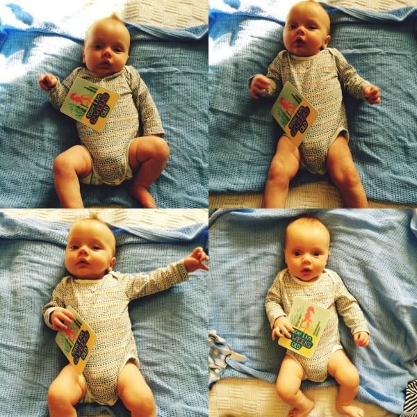 Jaxon is 12 Weeks Old