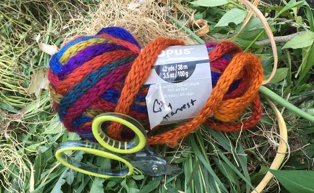 Photo: skein of colorful yarn marked 'City Harvest'