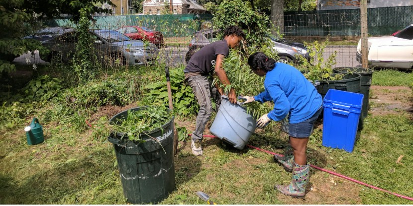 photo: man and woman work in garden