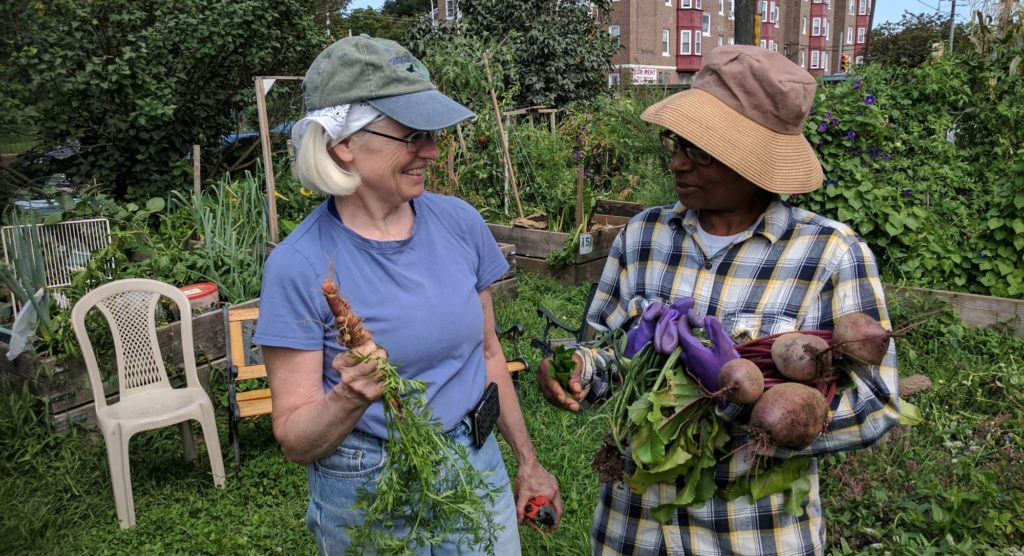 photo: two women displaying carrot and beet in garden