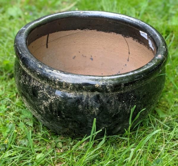 photo: shiny black pot