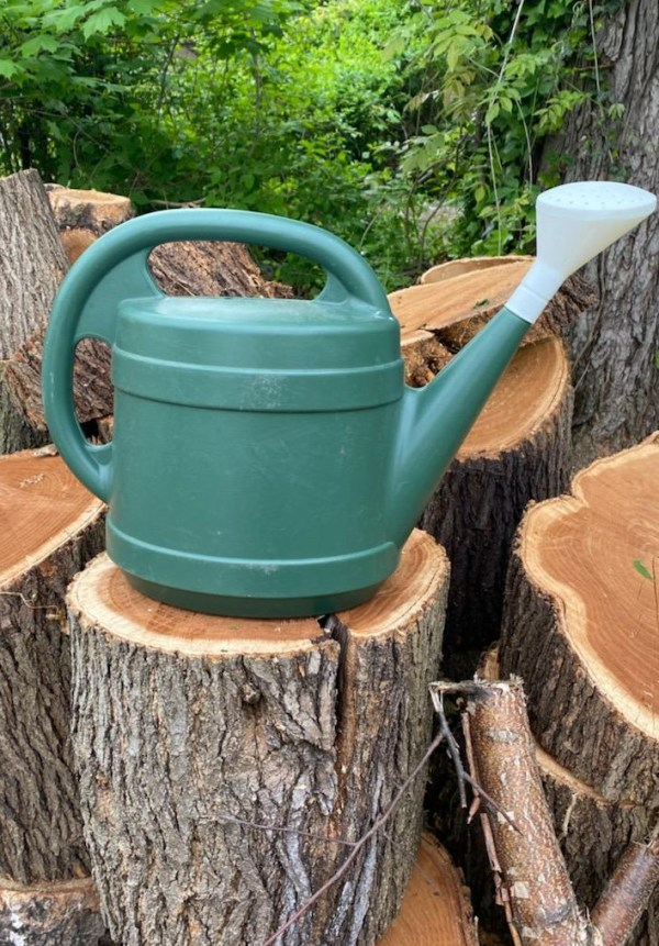 photo: watering can on a log
