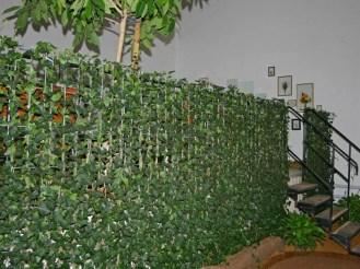 Die fertige Efeuhecke 1,00 m oder 1,80 m hoch muss nur noch gepflanzt werden und schon besteht von jetzt auf gleich ein guter Sichtschutz.
