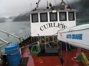 M/V Curlew, 65-foot research vessel. Bill Hanson