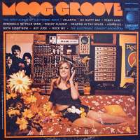 Moog Groove