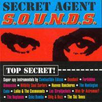 Secret Agent S.O.U.N.D.S