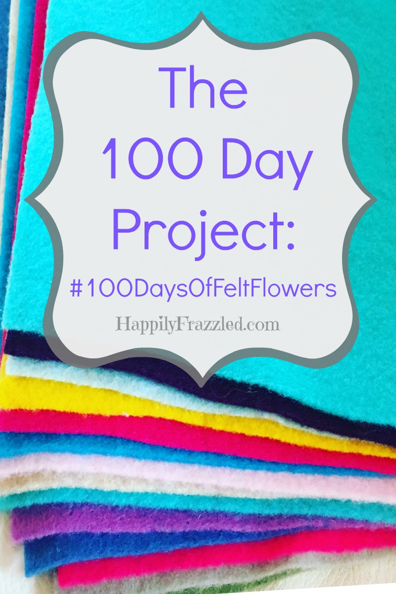 The 100 Day Project | HappilyFrazzled.com