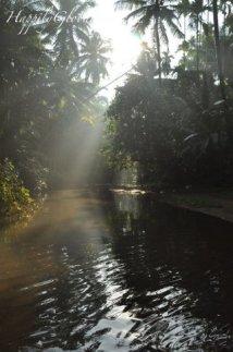 08-Maachli water stream