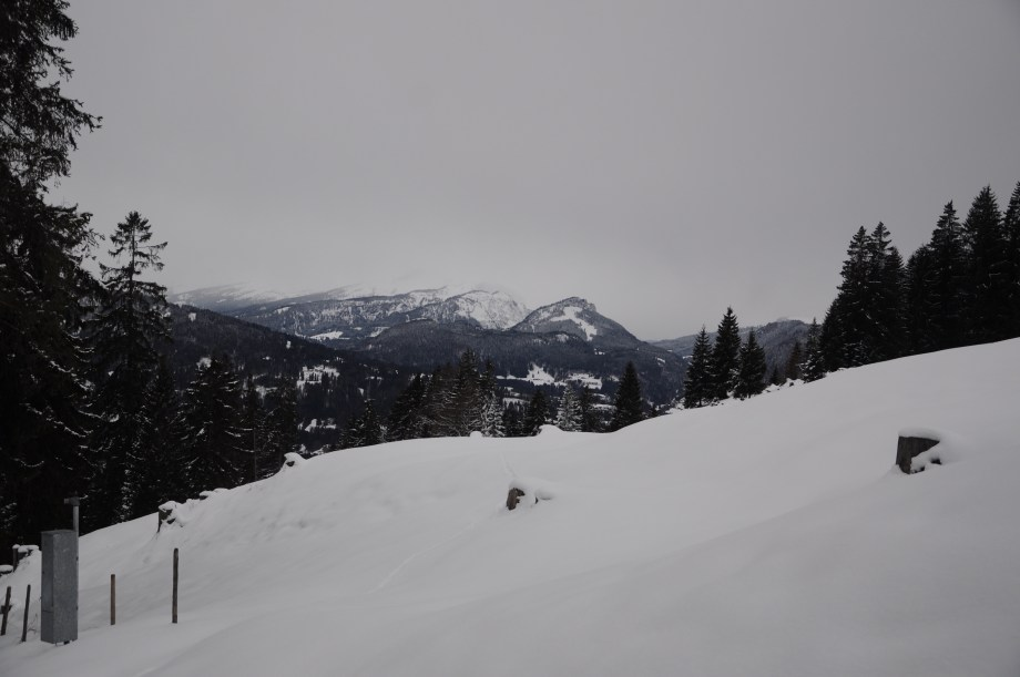 Hiking Nebelhorn