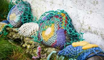 Yarn bombed stones in Kilkee along the cliff walk
