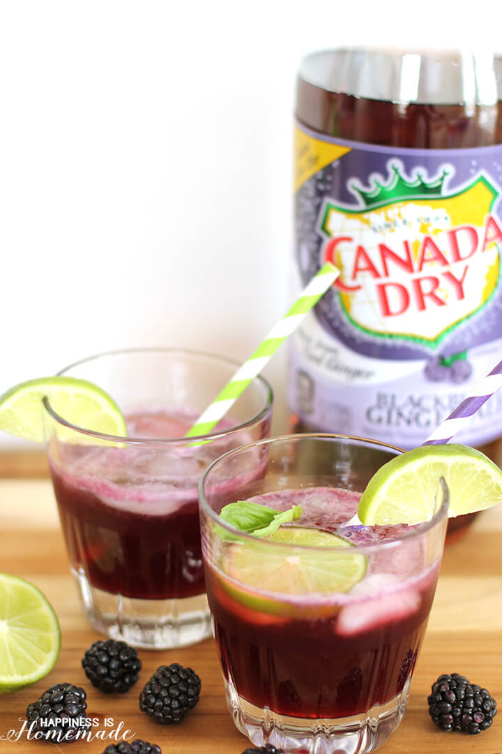 Blackberry Lime Cocktail Recipe with Canada Dry Blackberry Gingerale