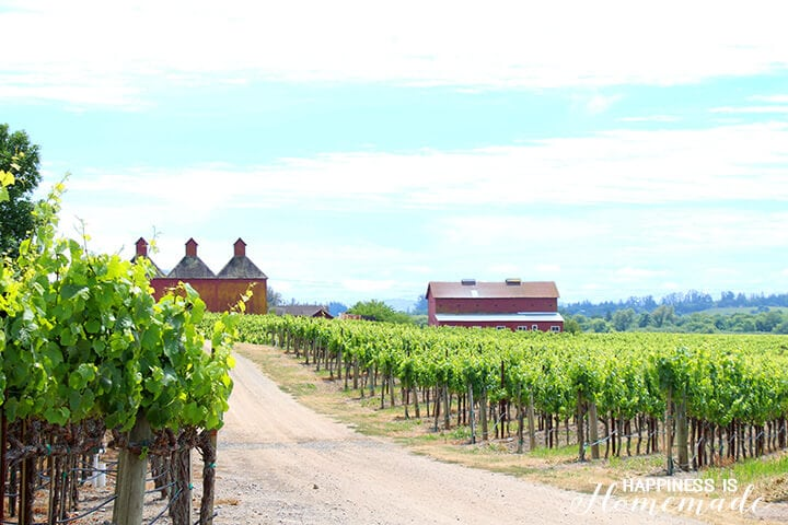 Barn at the Sonoma-Cutrer Vineyard