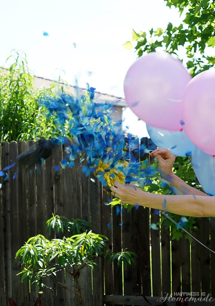 Baby Gender Reveal Ballon Pop
