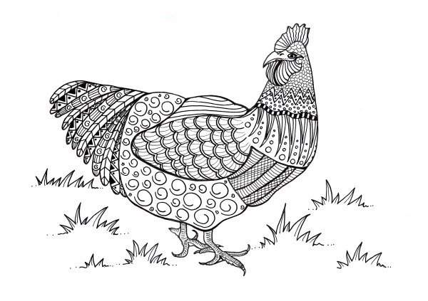 printable coloring pages # 72