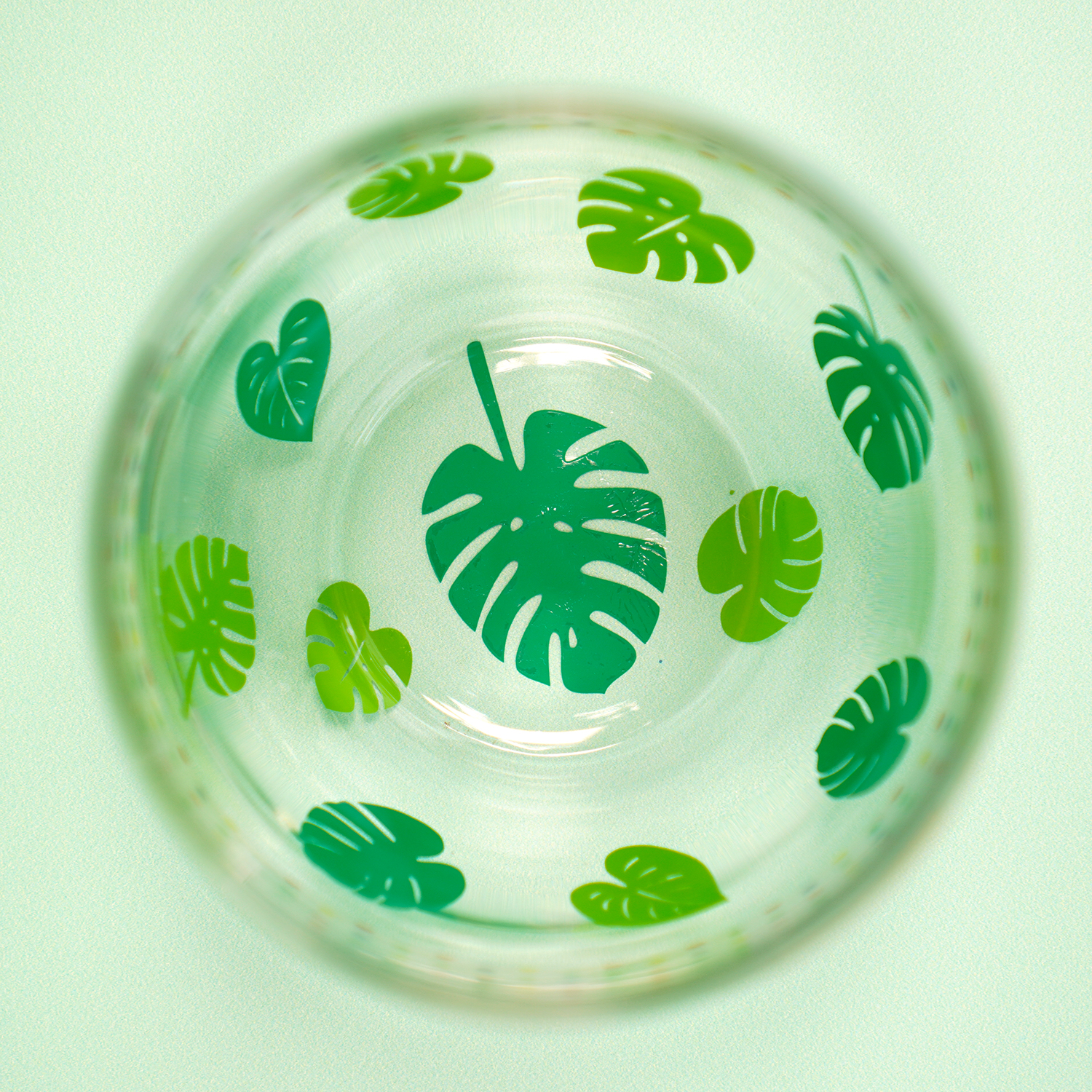 Inside of wine glass with tropical monstera leaves in different shades of green