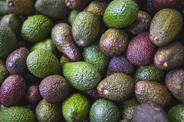 Close up of pile of avocados with assorted colors of skin ranging from green to purple