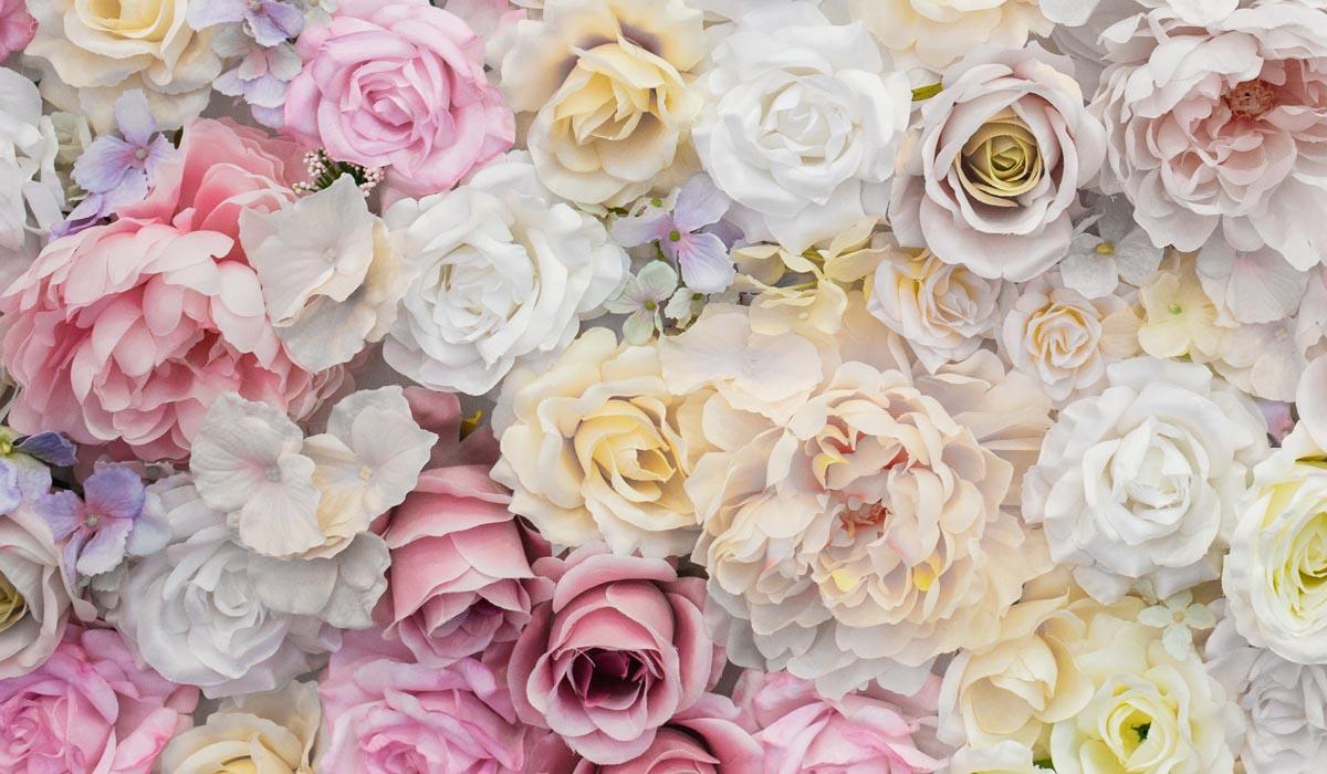 ความหมายของดอกกุหลาบแต่ละสี, ความหมายของดอกกุหลาบ