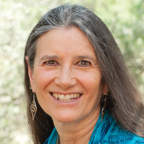 Sandra Ingerman, Shamanic Wisdom