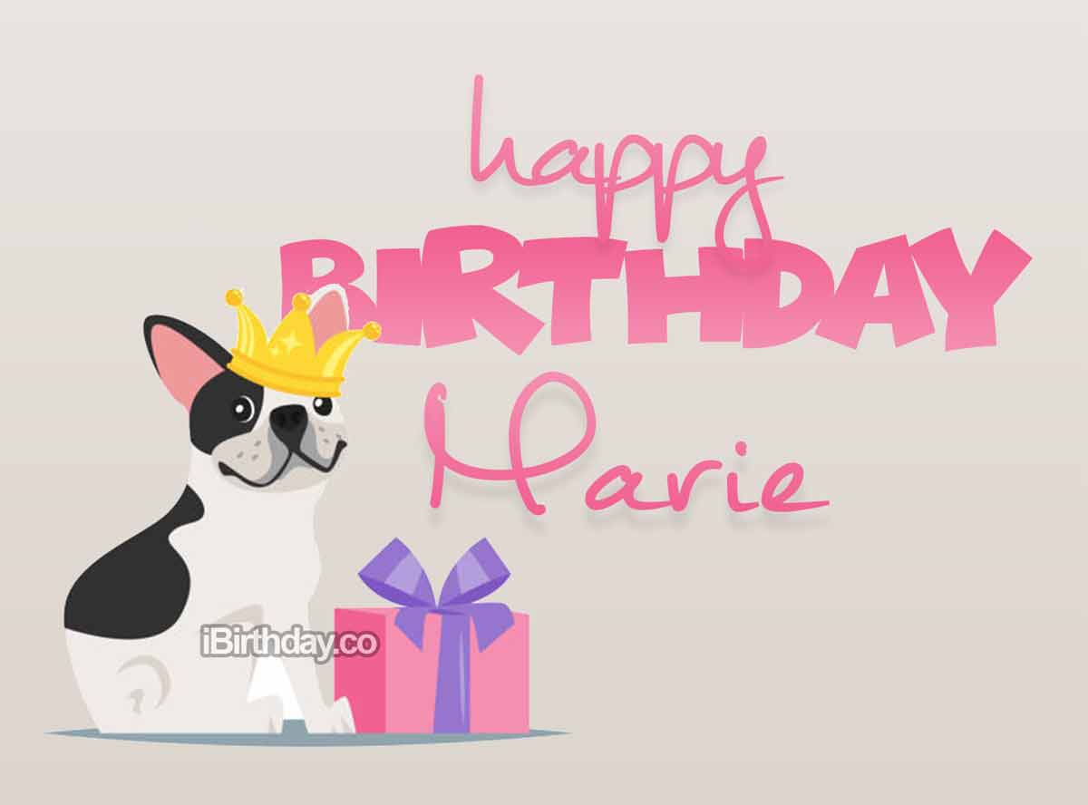Marie Dog Birthday Wish Happy Birthday