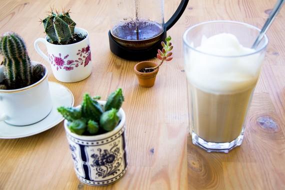 happy acorn koffie plants urban jungle bloggers