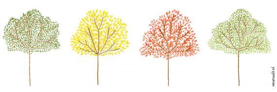 ninamaakt gekleurde bomen ochtendwandeling
