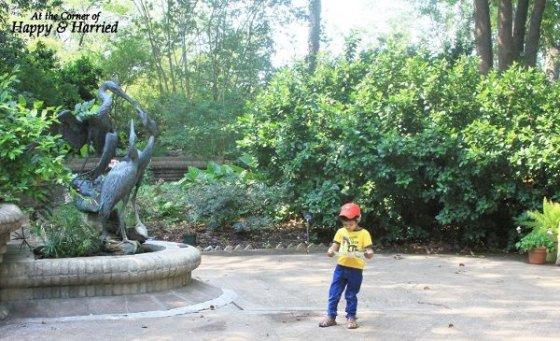 San Antonio Botanical Garden 18