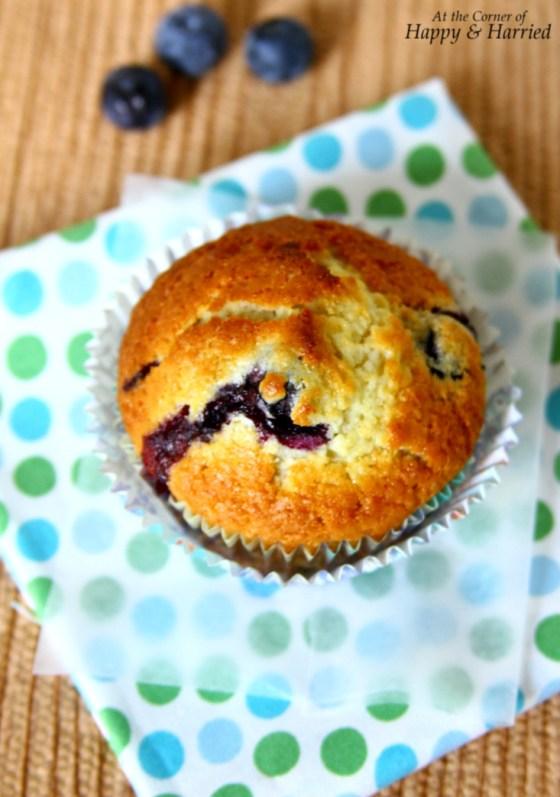 Blueberry Vanilla Muffins