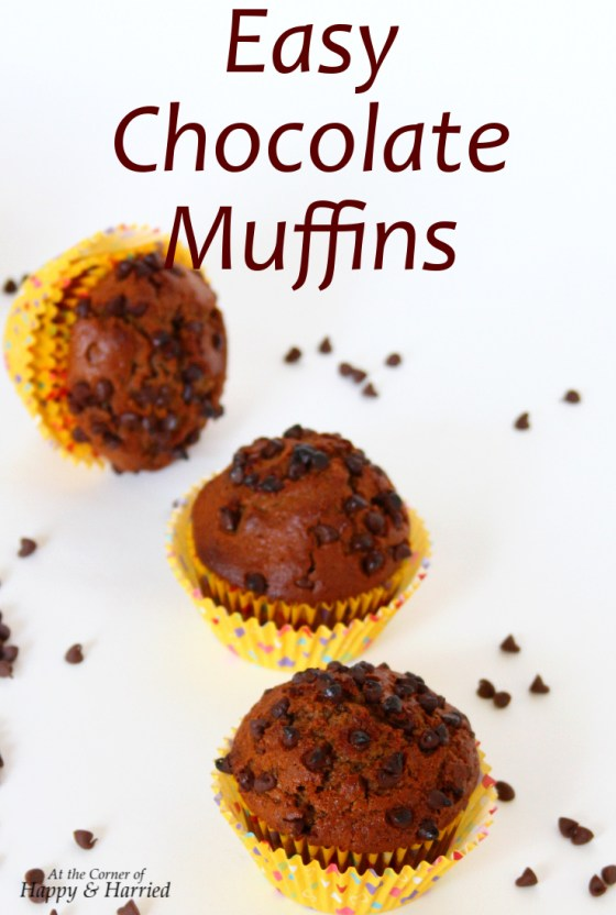easy-chocolate-muffins