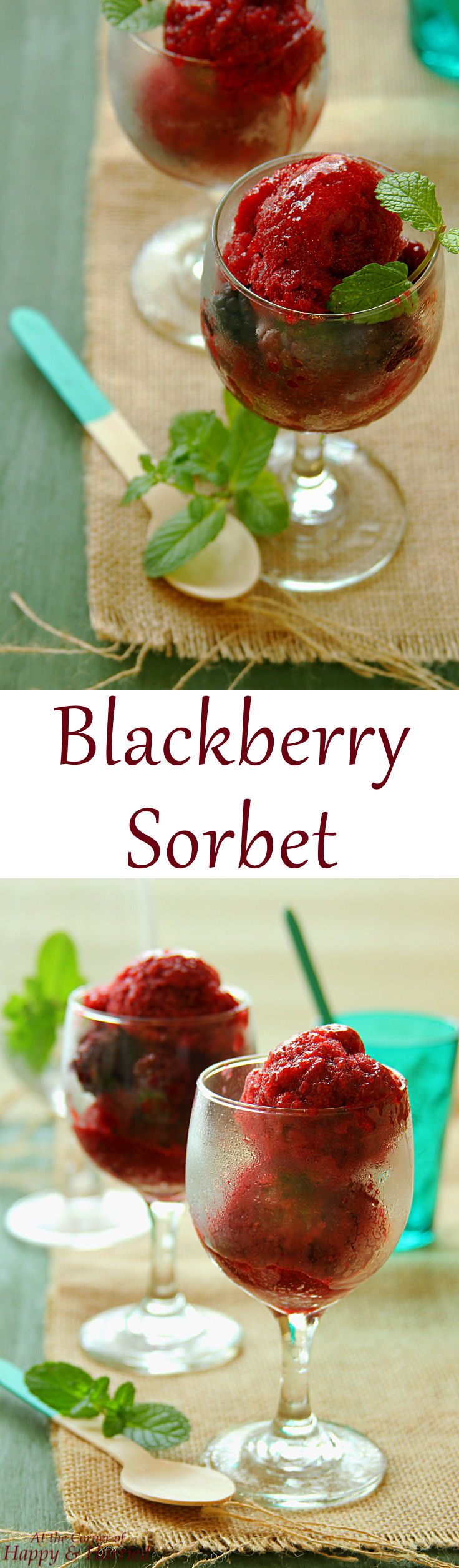 BLACKBERRY SORBET {HOW TO MAKE ANY FRUIT SORBET}