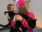 Duncan, Quinn & kittens
