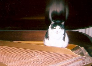 Roxy on her baby grand