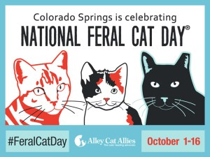 National Feral Cat Day 2016