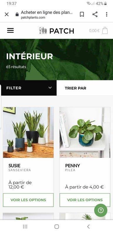 PATCH-livraison-plantes-10
